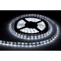 TIRA X 5 METROS 120LED 80 W MACROLED
